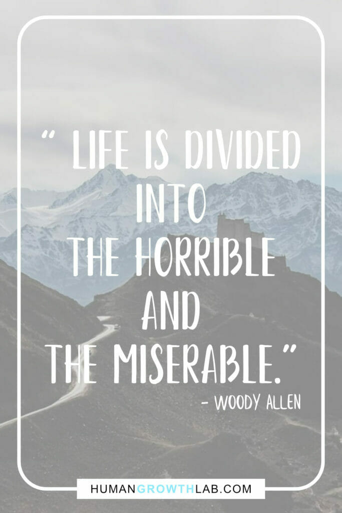 """Woody Allen quote on life sucking - """" Life is divided into the horrible and the miserable."""""""